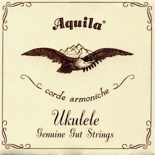AQUILA 43U